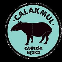 Logo Danta Calakmul.png