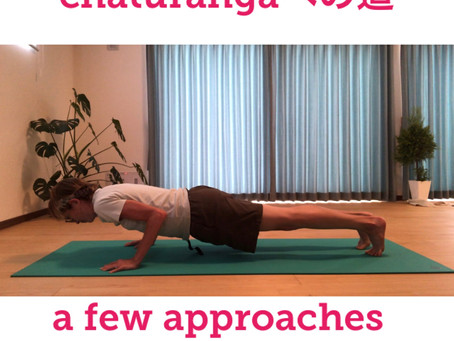 Yoga lesson: approaches to chaturanga
