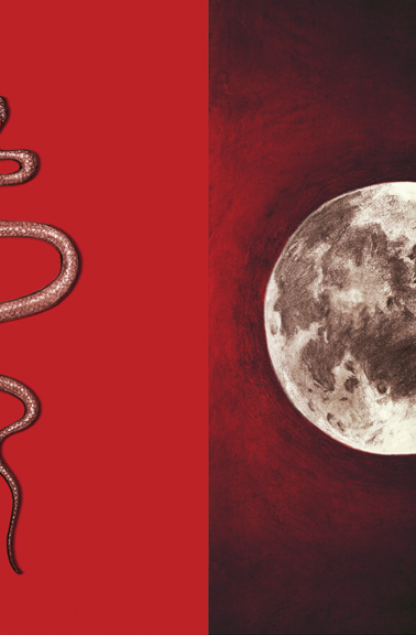 Snake and Moon