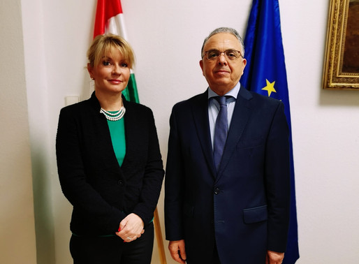 Meeting with the State Secretary for the Diplomatic Academy and the Stipendium Hungaricum Program