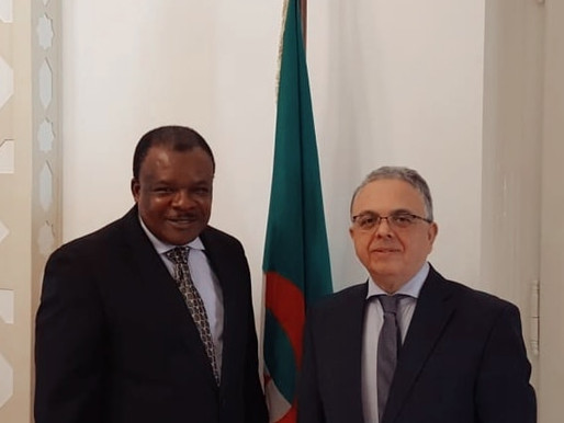 Meeting with the General Secretary of the Africa-Hungary Association