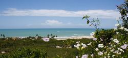 The beaches in Trancoso