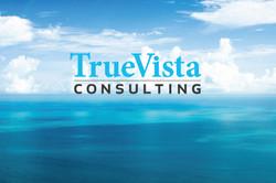 True Vista Consulting
