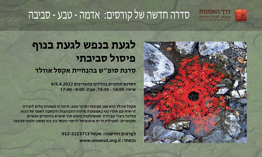environmental workshop poster 22.jpg