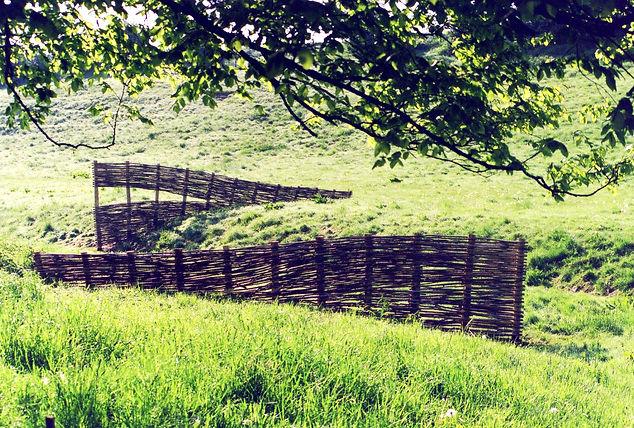 Murmur of the Valley2.jpg