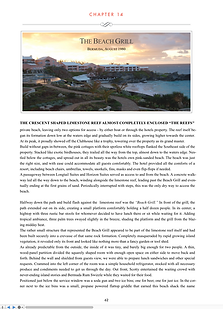 Sample Chapter Tropical Itch. A journey to the Caribbean.Recipes, Wisdom and Stories.019-11-05 at 5.25.29 AM.png