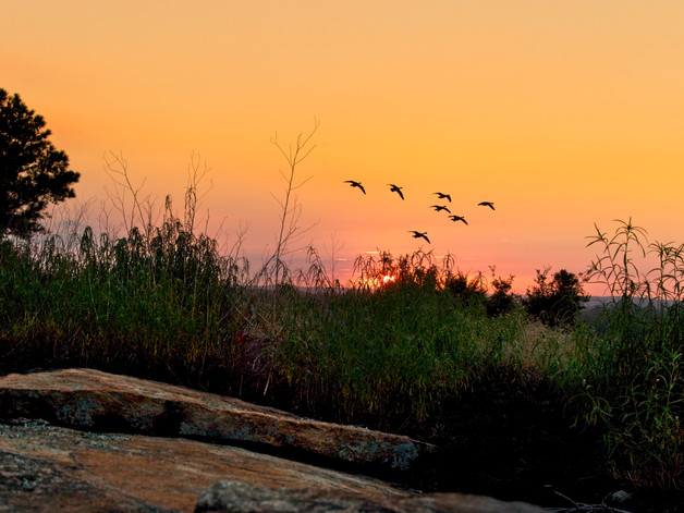 Sunrise Stone Mountain  7111