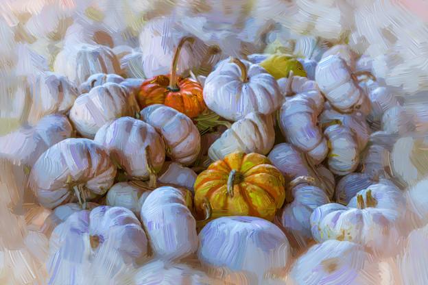 Pumpkin in Oil  8857