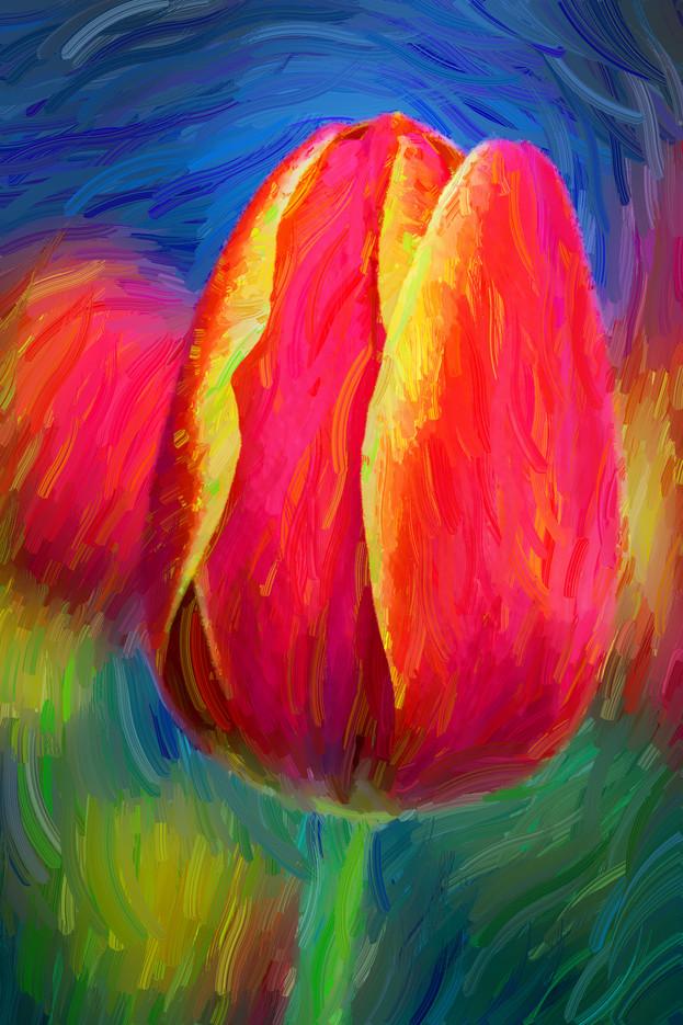 Tulip in Oil Paint 4966