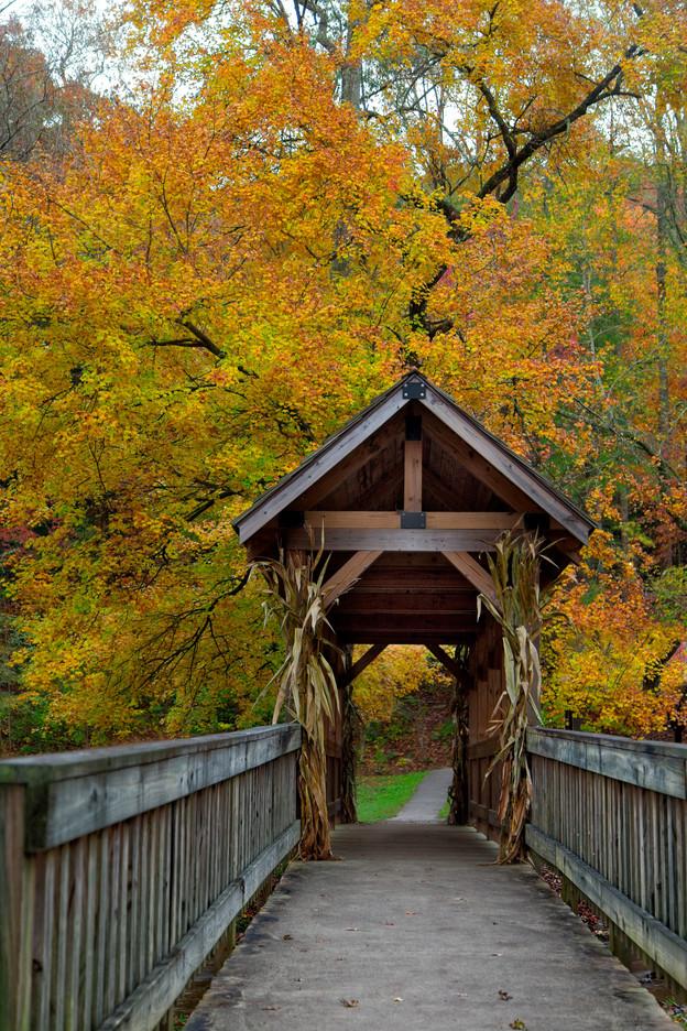 Bridge 1612