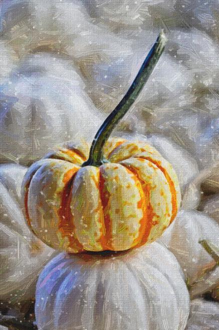 Pumpkin Oil Paint  5022