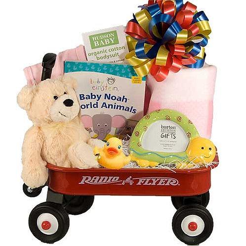 Baby Welcome Wagon Gift