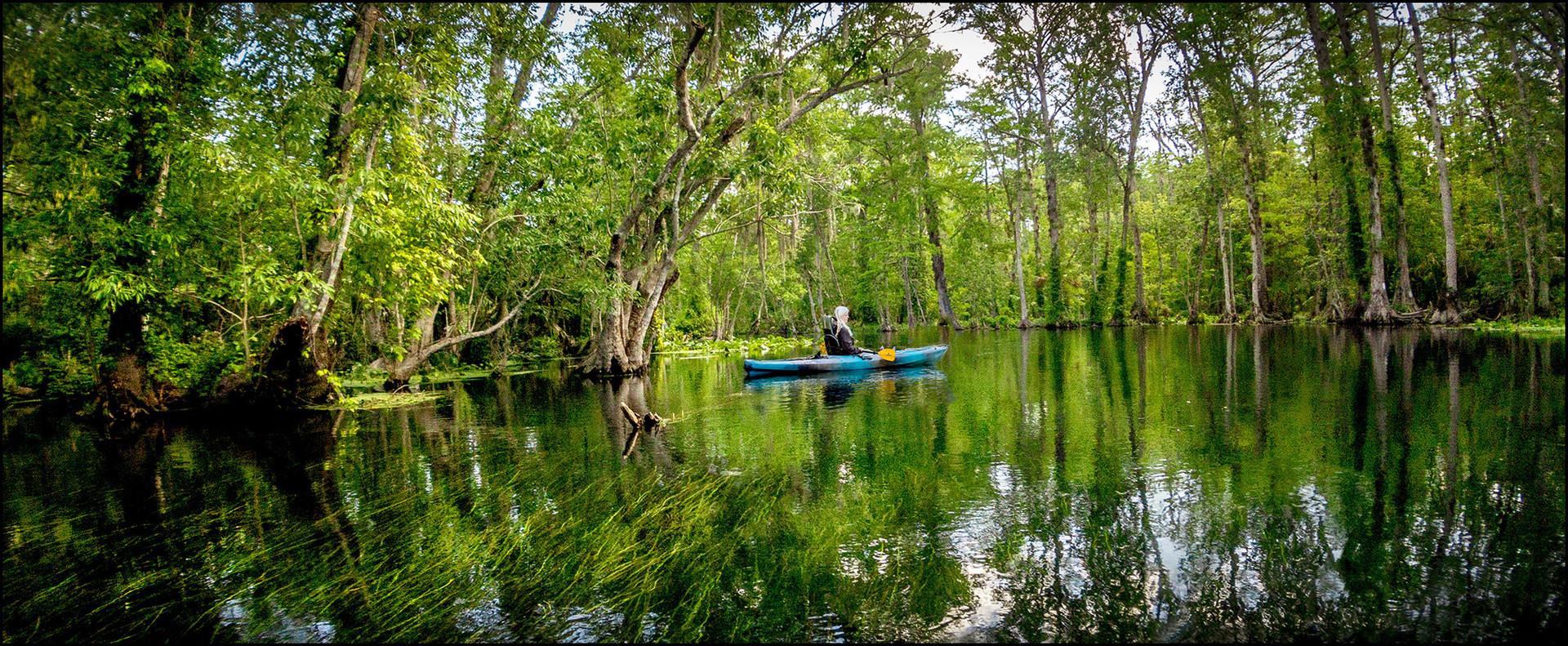Peaceful Kayaking