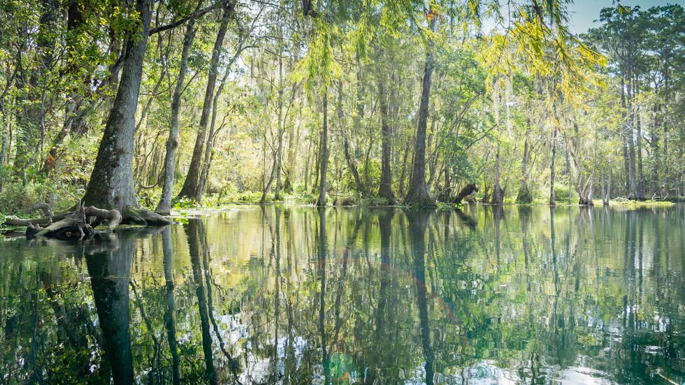 Scenic Silver River-6
