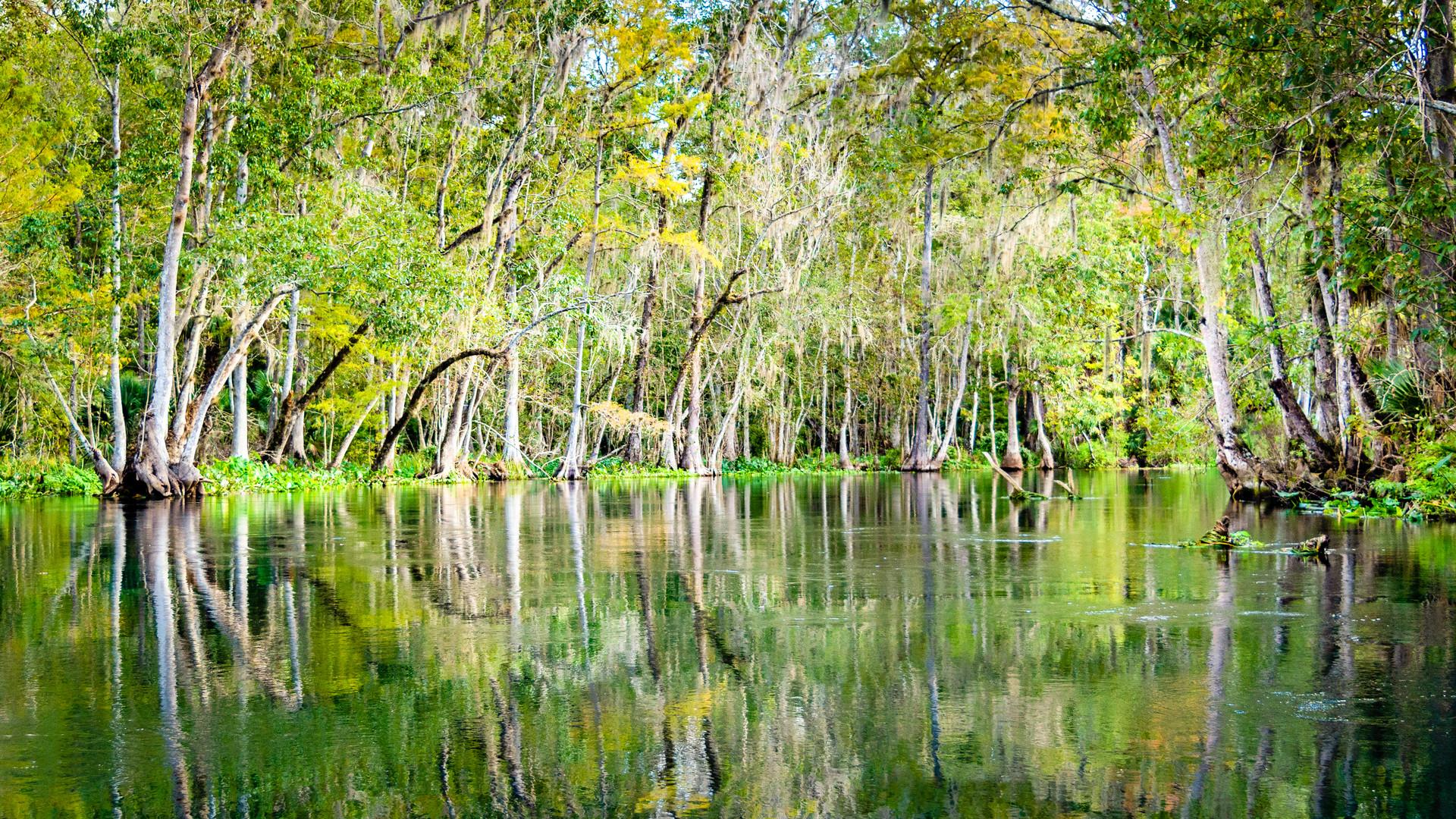 Scenic Silver River-7