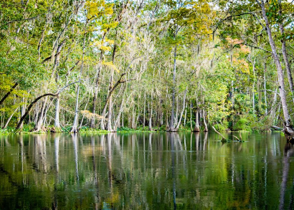 Scenic Silver River-4
