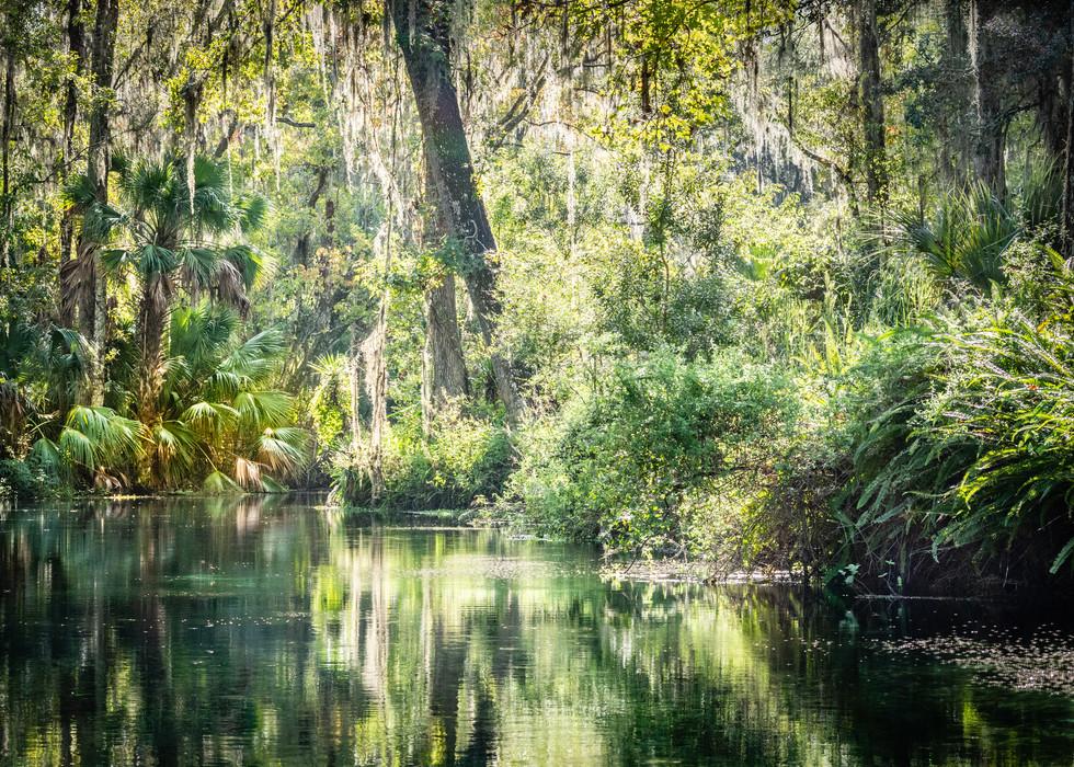 Scenic Silver River-13