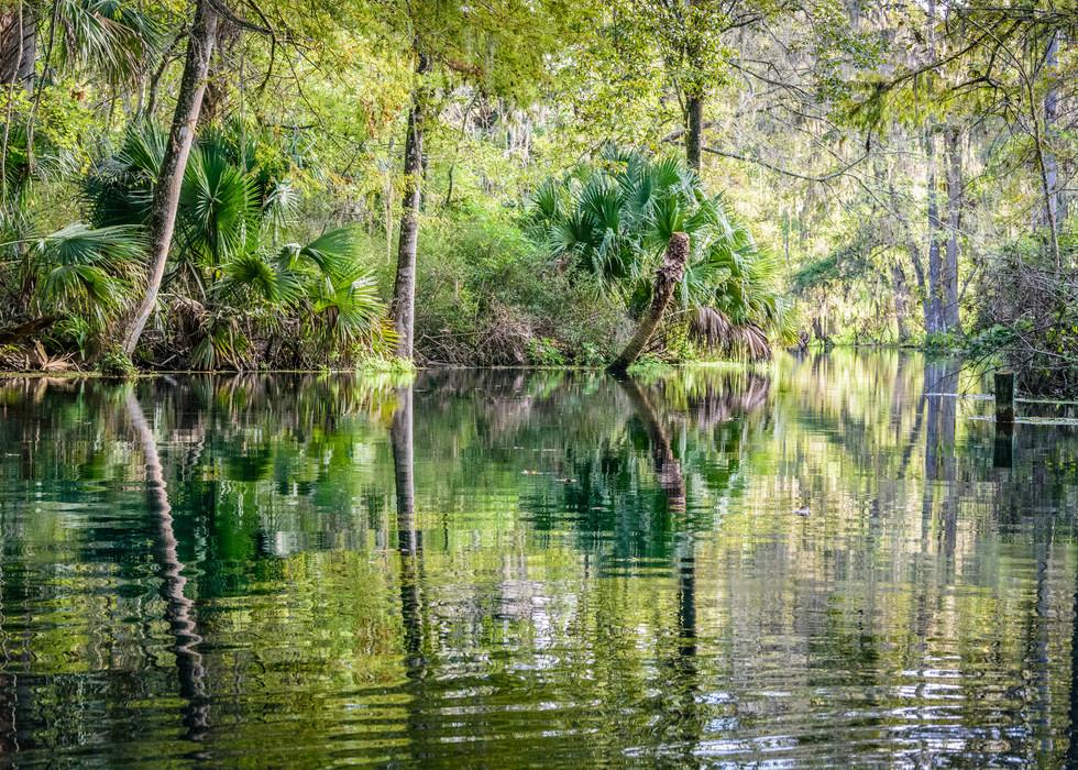 Scenic Silver River-8