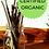 Thumbnail: 100pk Certified Organic Elderberry Cuttings - Adams
