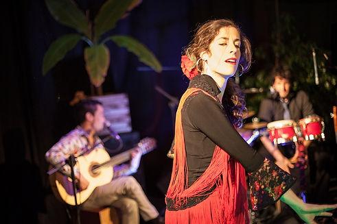 arena negra flamenco.jpg;Spectacle de flamenco ;groupe de musique flamenco, rumba espagnole; danse flamenco; groupe flamenco à Pau, Tarbes; Flamenco 64,65,32,40