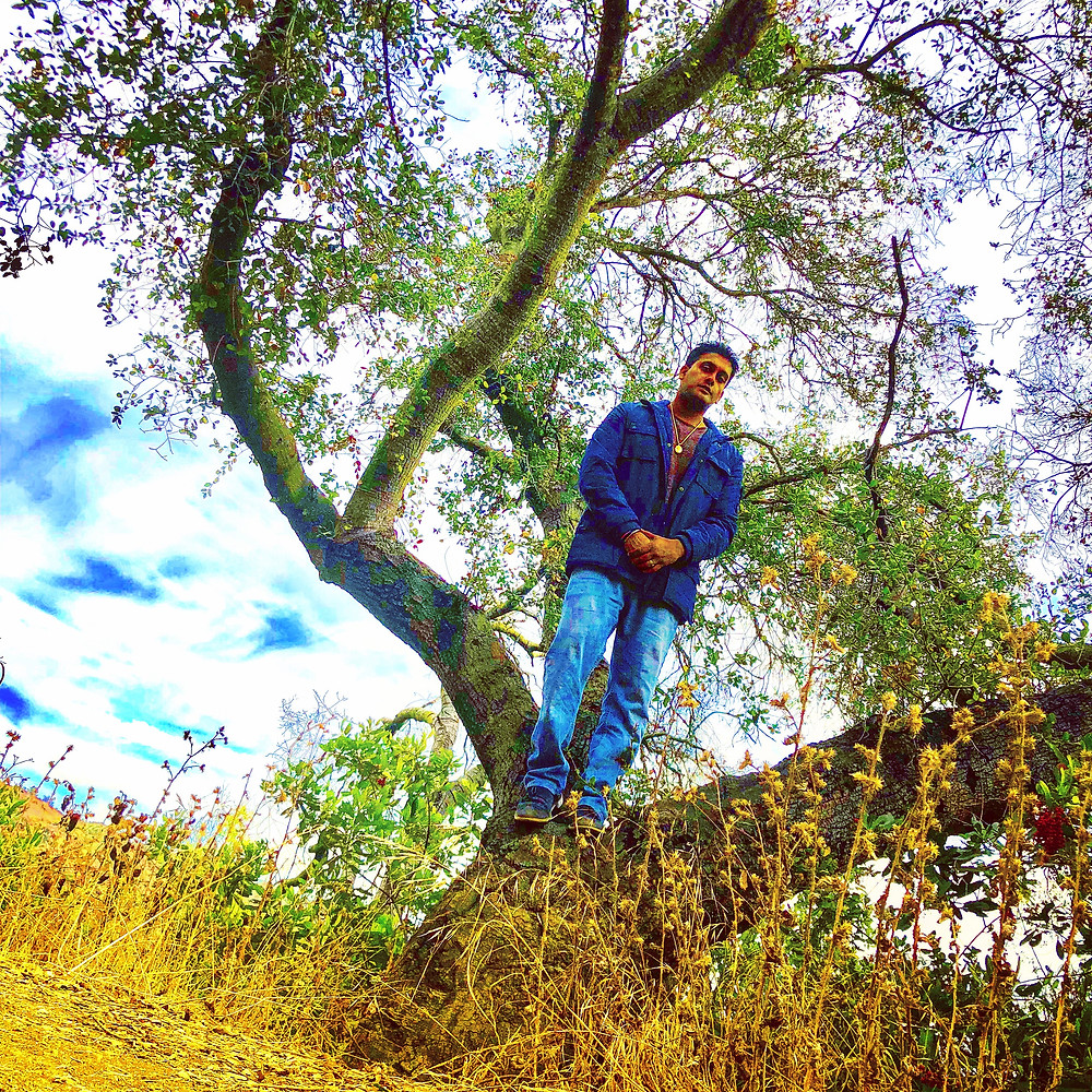 Just me hanging in a tree in nature. Topanga canyon allows me to recharge my vibrations !!