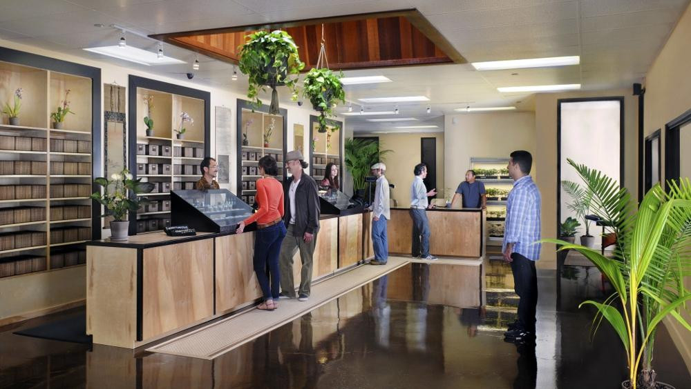 medical marijuana and cbd dispensaries in los angeles california are very common
