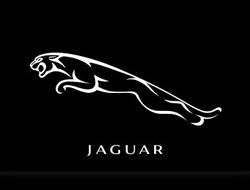 list-bg-jaguar