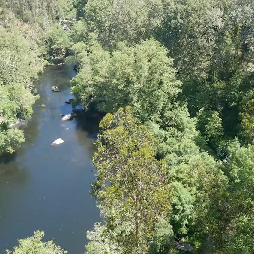 Probas 3D no río Mandeo