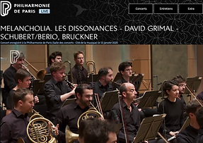 Les Dissonances Maximilian Krome
