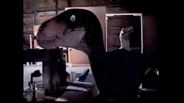 Raptor Video.mp4_snapshot_02.42.418.jpg