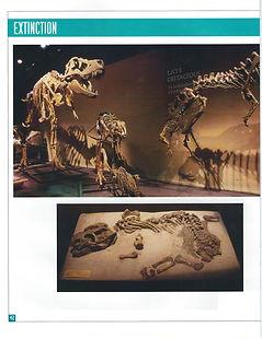 DinoExhibBook (3).jpg