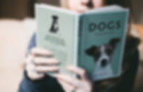 blur-book-close-up-880720.jpg