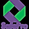 SafePro Logo Pantone - 7677 & 7481.png