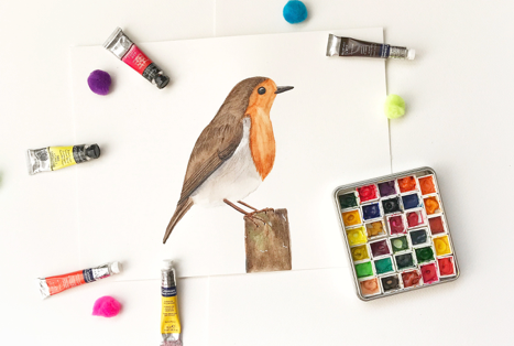 How to paint robin bird with watercolors