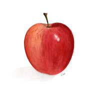 Watercolor Apple Illustration