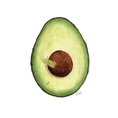 Cut Avocado Illustration