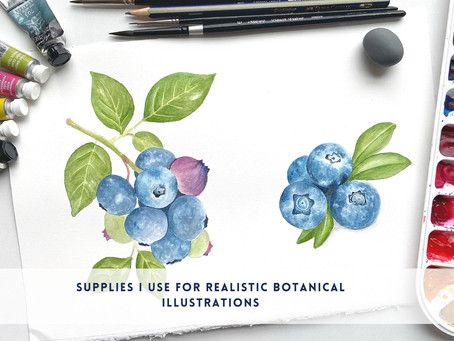 Supplies I use for Realistic Botanical Illustrations