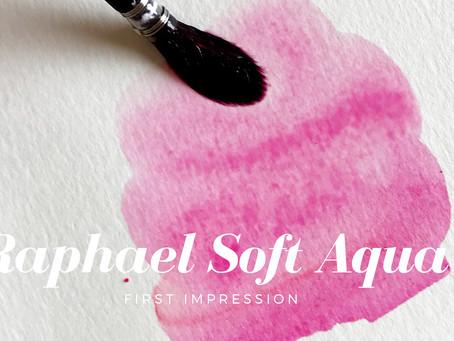 Raphael Aqua Soft Mop Brush Review