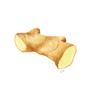 Ginger Illustration