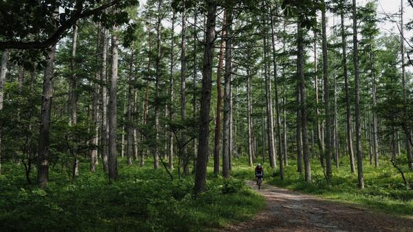 Bikepacking_Japan_PF_180521_00230.JPG