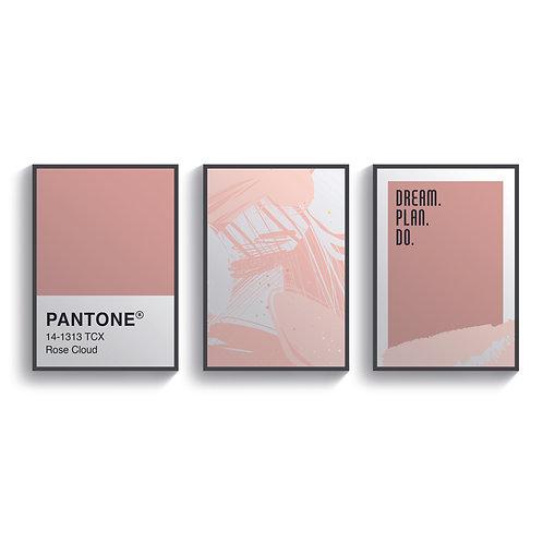 Pantone Rose Set Of 3