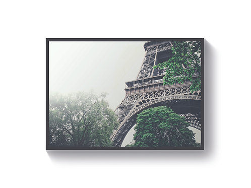 Paris in Mist