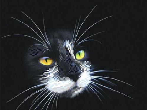 """Вышивка на шёлке бисером частичная """"Чёрный кот"""" Матрёнин посад арт. 4102Г"""