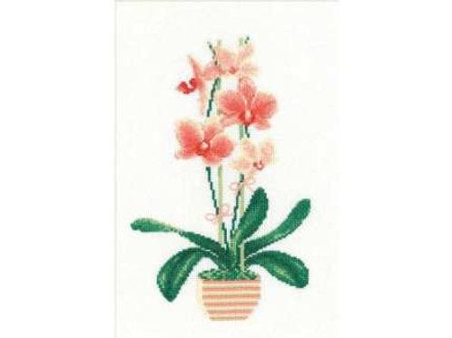 """Вышивка крестом """"Жёллтая орхидея"""" 1161, размер работы:21х30 см. Риолис"""