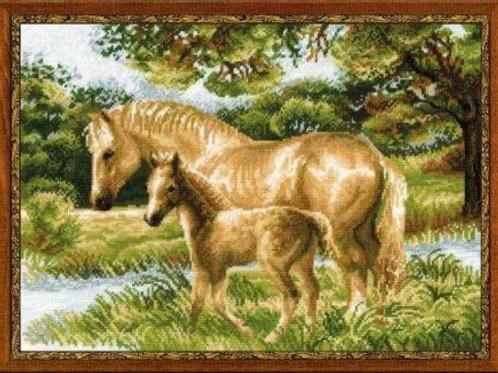 """Вышивка крестом """"Лошадь с жеребёнком"""", 1258"""