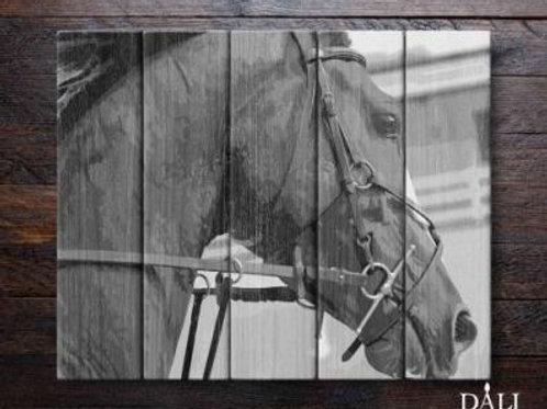 """Картины по номерам по дереву WF001 """"Лошадь в поводьях"""" 40х50 см"""