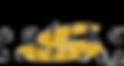 Safika Holdings (Pty) Ltd