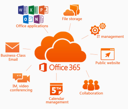 Office 365 for Business Explained