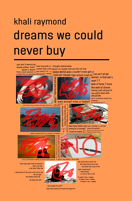 Dreams We Could Never Buy