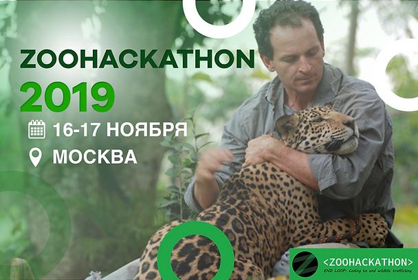 zookhakaton.png